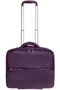 Plume Business Pilot Case Violet
