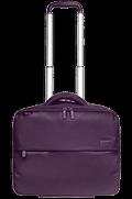 Plume Business Pilot Case Purple
